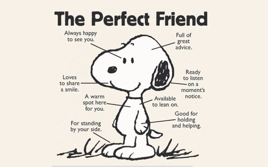 Image result for Finding A Friend Picture