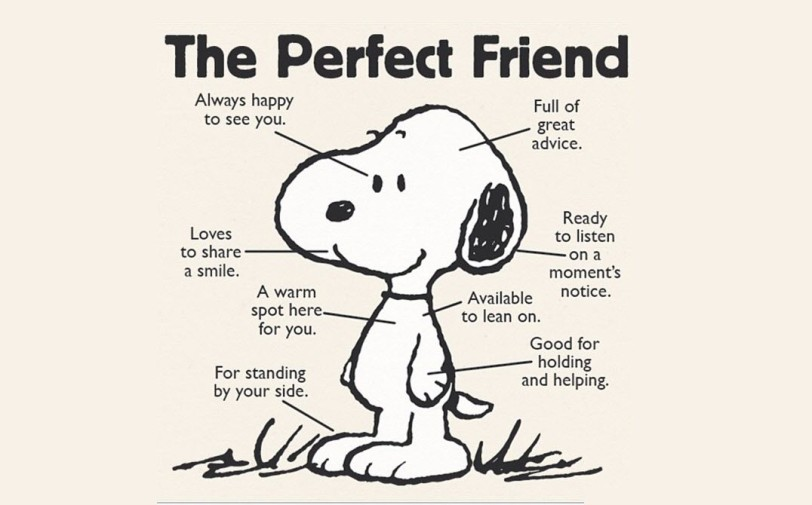 the perfect friend orlando espinosa