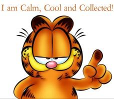 calm cool and collected-orlando espinosa