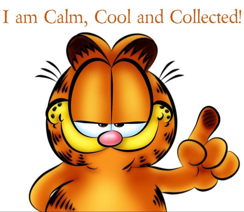 Calm Cool And Collected Orlando Espinosa