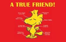 true friend-orlando espinosa