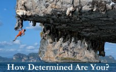 How Determined are you-orlando espinosa