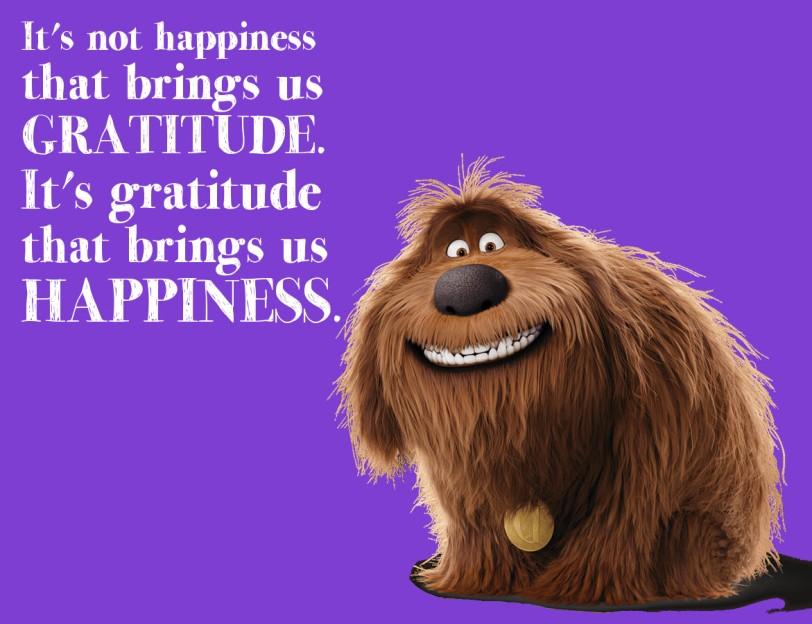 gratitude-brings-orlando espinosa