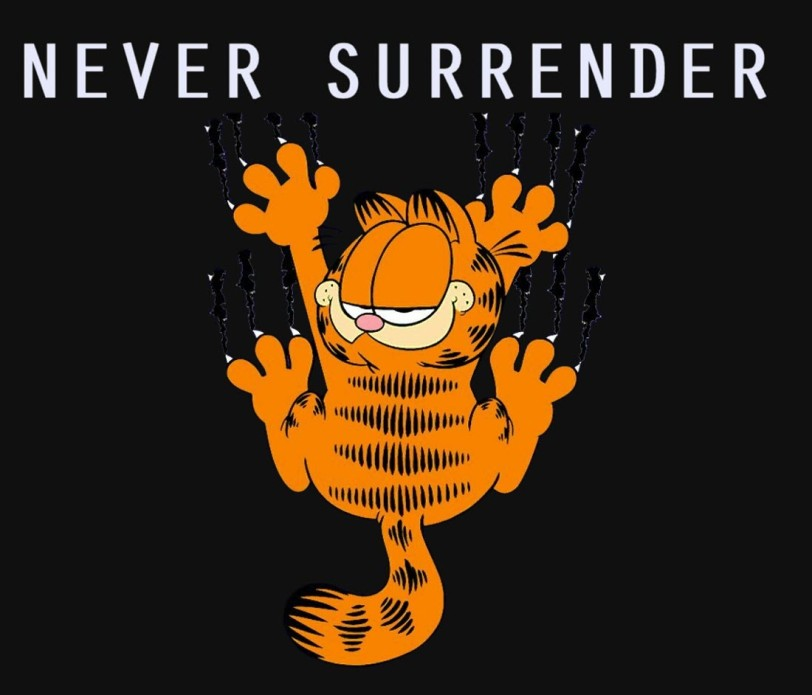 never-surrender-orlando-espinosa