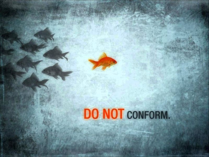 Be A Leader Not A Follower Cornfedcontessa