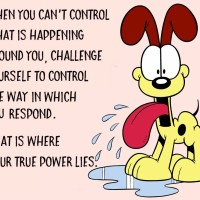 What You Have Control Over