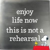 Enjoy Life Now
