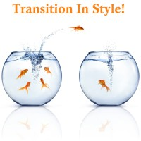 As You Transition