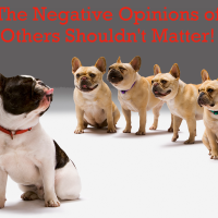 Negative Opinions of Others