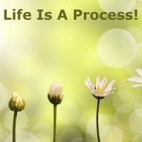 Life's Process